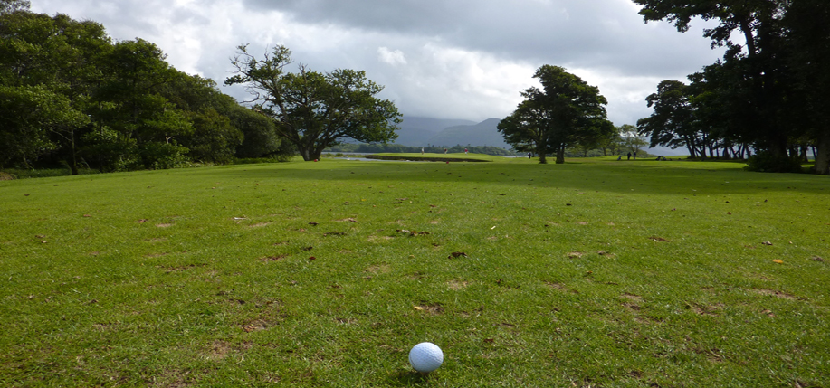Golfing in Ireland. Photo: Robert Schroeder.
