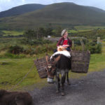 A young boy, his donkey and his dog sit for photos on the Ring of Kerry.