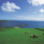 The green pastures of Kilcar. Courtesy of Tourism Ireland.