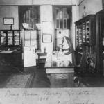 Sr. Mary Ignatius Feeney, the first woman pharmacist in Illinois