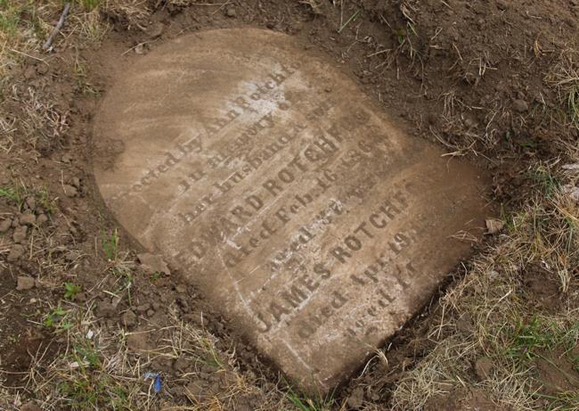 One of theunearthed headstones at Calvary Cemetery. Another 600-900 headstones are estimated to remain burried. Waltham News Tribune.