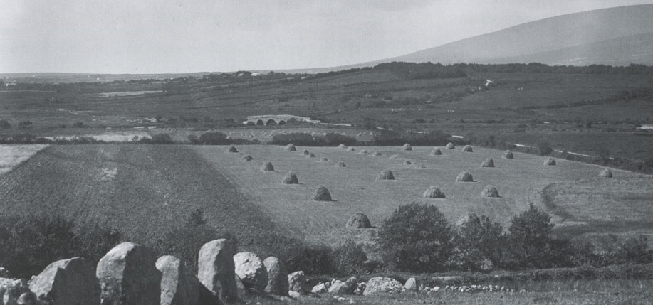 Burrishoole, Co. Mayo. The raised circular  embankment in the corner of this meadow is one of more than 1,800 Iron Age ring forts in Co. Mayo. All photos Ernie O'Malley.