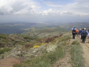 Mountain views on the trail. Photo: Honora Harty.