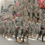 Clockwise: The New York 69th infantry battalion march in the St. Patrick's Day Parade with Irish wolfhounds – the company's mascots. Photo courtesy of Lt. Col. James Gonyo.