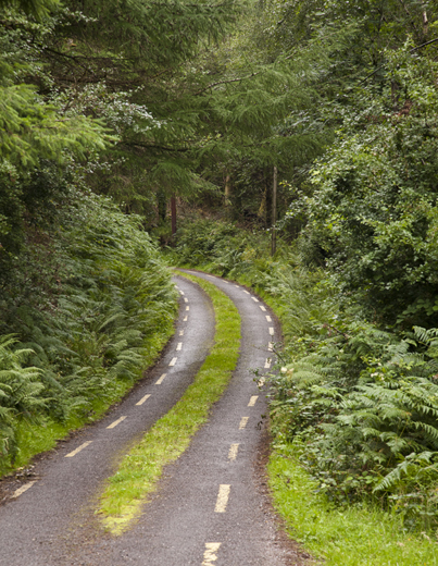A single-lane country road, interior of County Kerry.