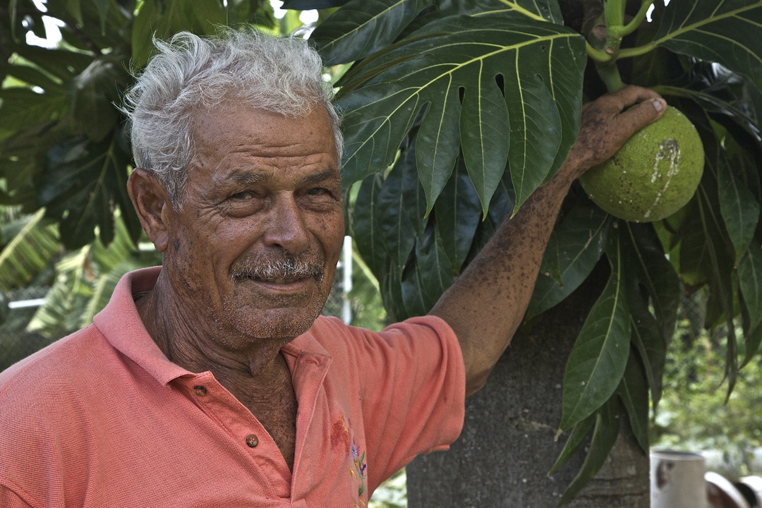 George Highland Hickson with his breadfruit tree.