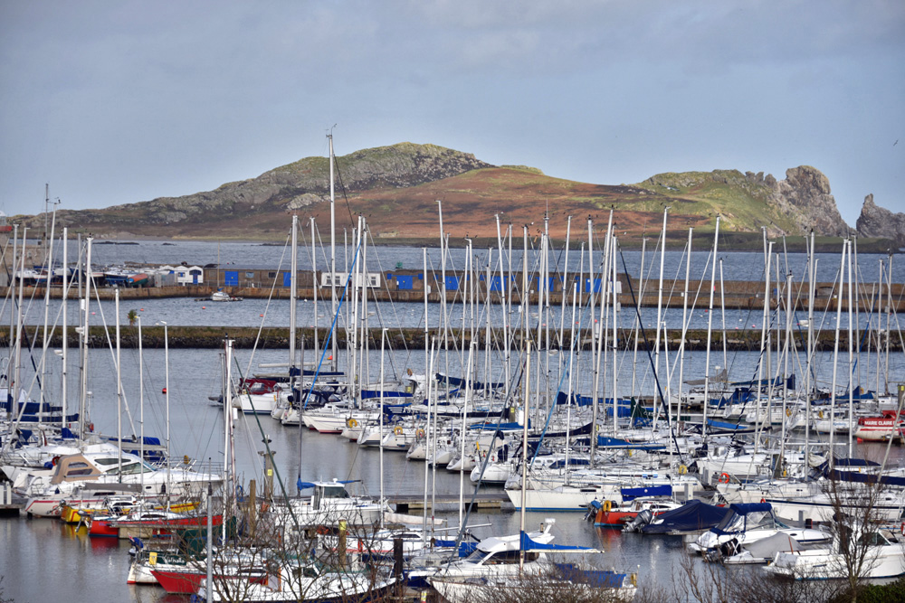 Sailing boats in the harbor of Howth Peninsula.
