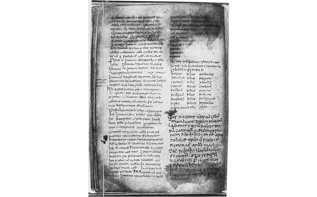 A page from the Book of Armagh, also known as the Canon of Patrick, a 9th century illuminated manuscript. Written mostly in Latin, it also contains some texts in Old Irish. It is held by the library of Trinity College, Dublin.