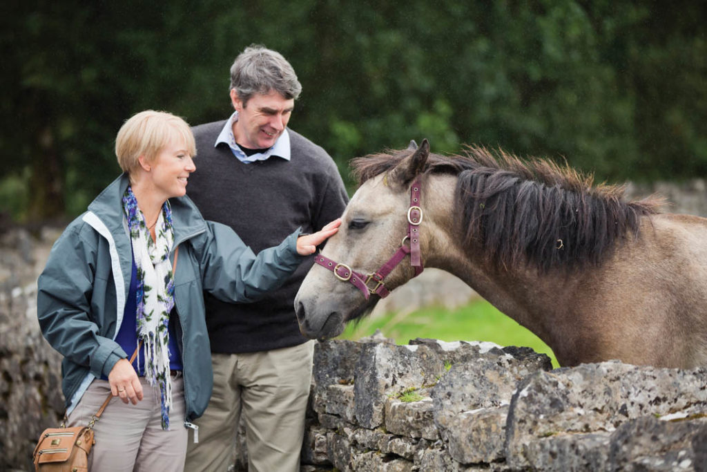 Connemara, where Irish is still spoken, is known for the Connemara pony, Capaillín Chonamara in Irish, a breed that originated in Ireland.